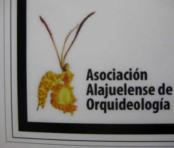 99c2a-orqui25cc2581deas03-lr-9587