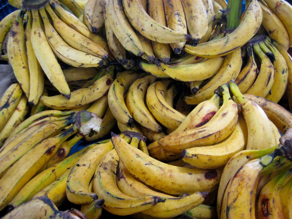 4bef2-plantains_4060