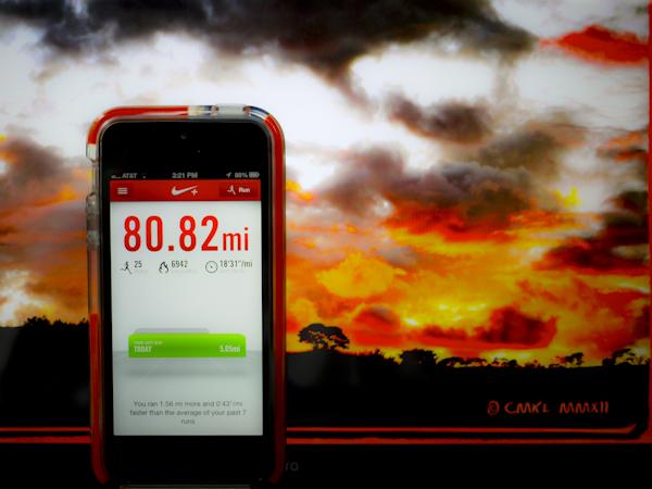 73a01-nike-app-small-lr-1150708