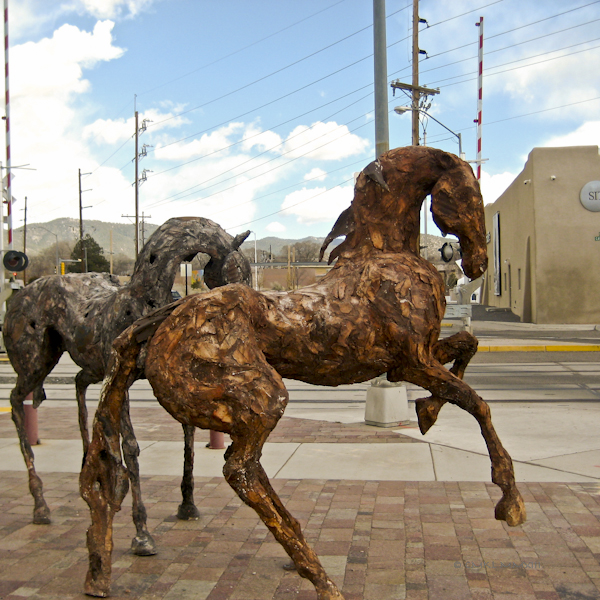 0b1b4-white-horses-5118