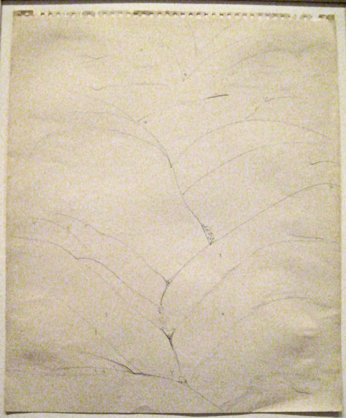19541-okeefe-sketch-5168