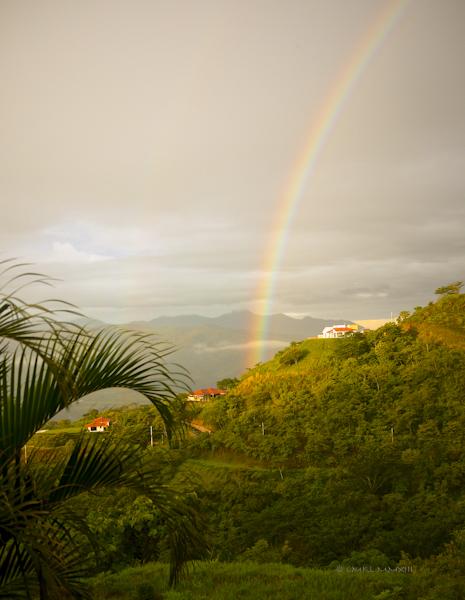 0d8b8-rainbow-05-1150949