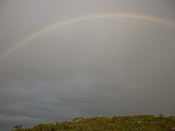 ee6fb-rainbow-02-1150947
