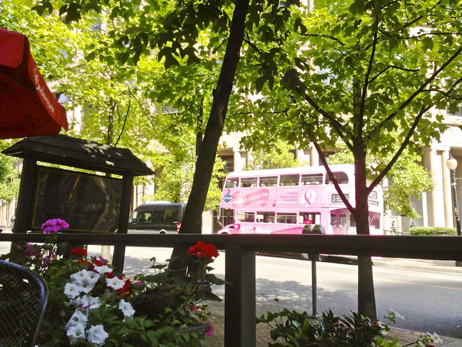 4eb19-pinkbus-2385