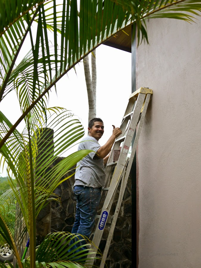 165c2-planting-05-1190314