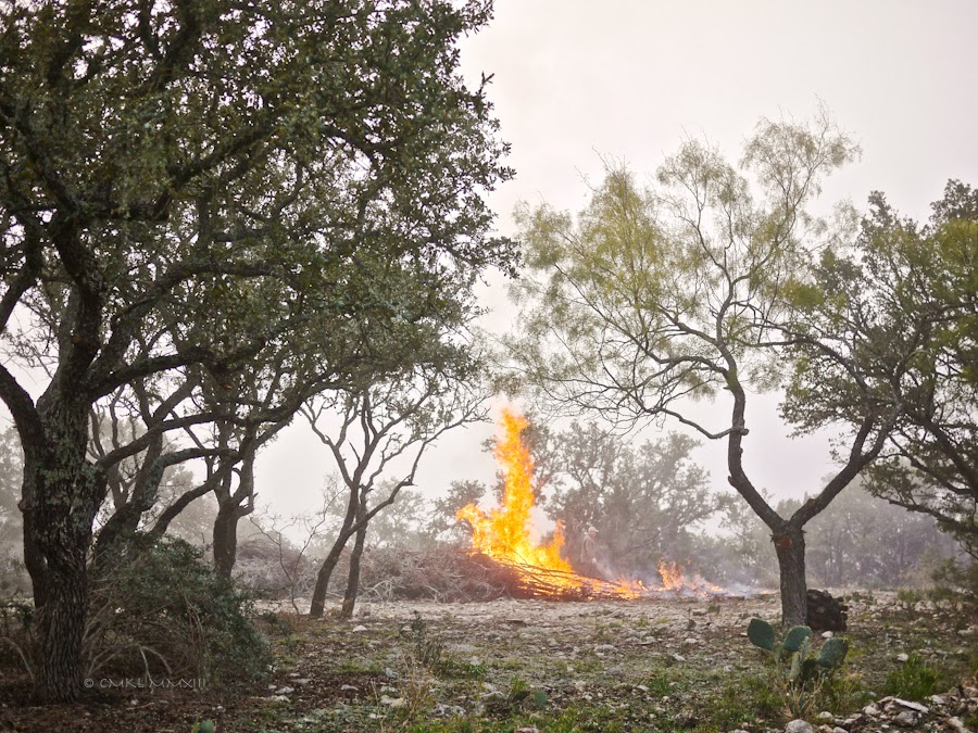 49790-bonfire-08-1210453
