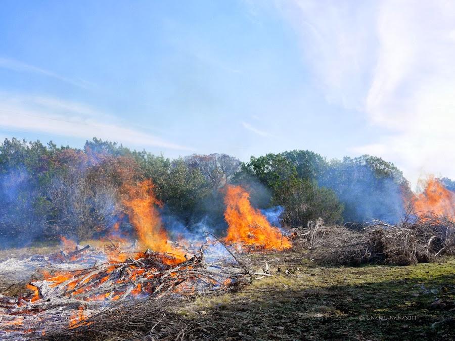5613f-bonfire-12-1210513