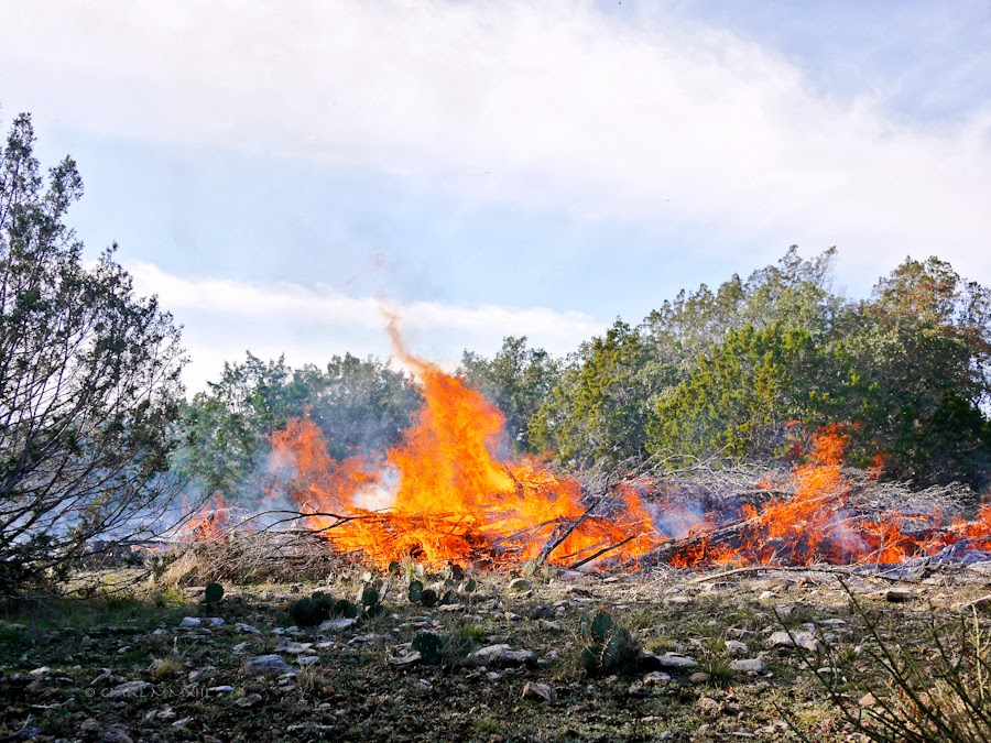 e9c41-bonfire-13-1210531