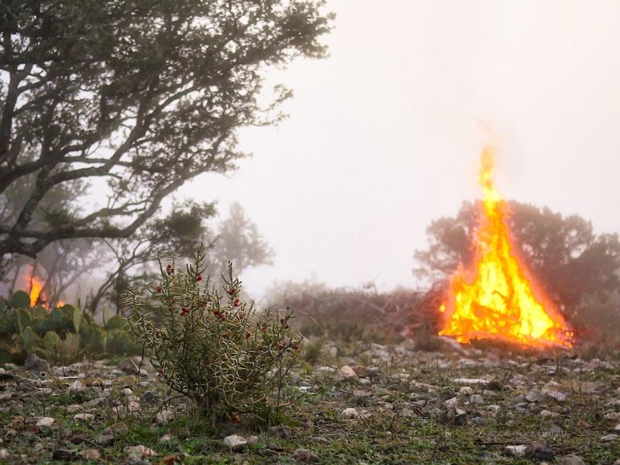 f384a-bonfire-04-1210395