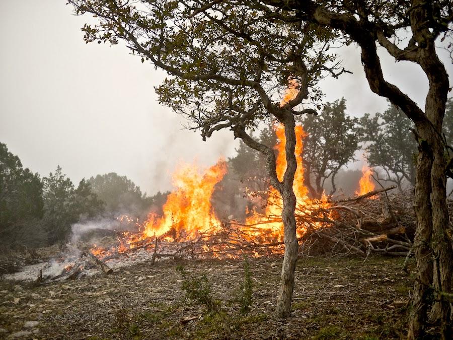f679a-bonfire-07-1210451