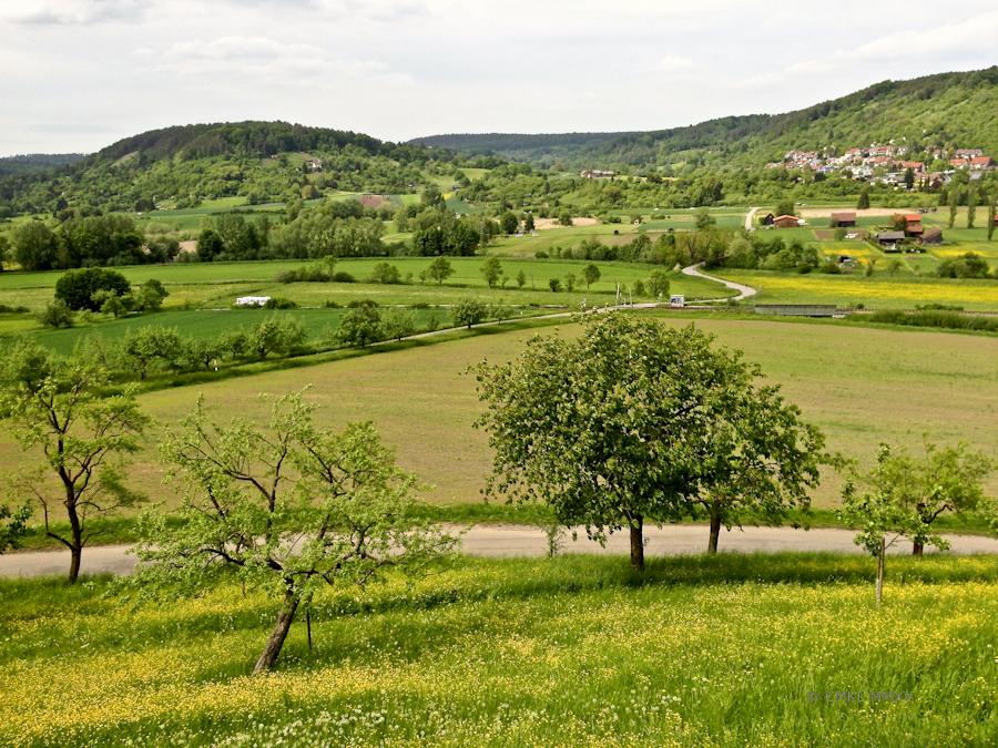 View from Schwärzlocher Hof Biergarten