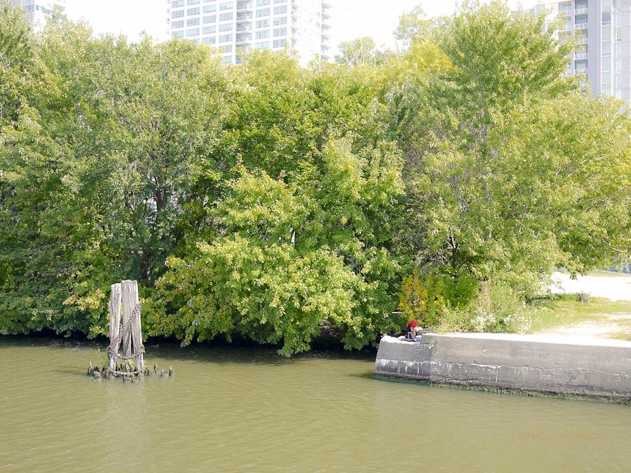 Chicago.RiverCruise.19-1390040