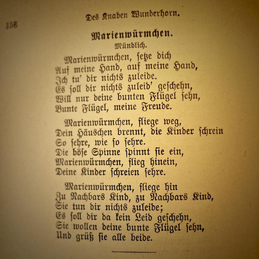 Wunderhorn.06-1400188