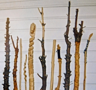 A collection of walking sticks Charles worked on in his yard and garage [photo credit DKK]