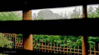 A fuzzy view uphill toward the church square through the tobacco barn shutters.