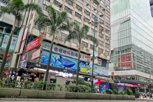Home.Exchange.HongKong.46-1190086