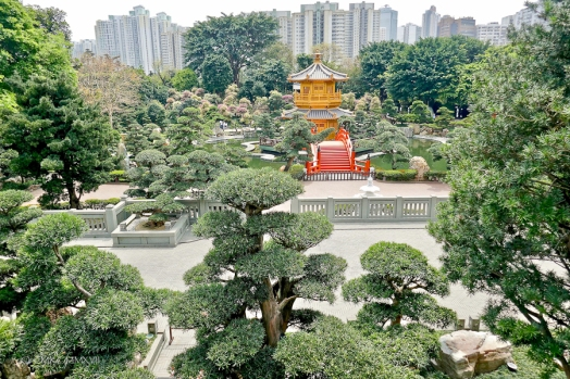 Looking back over the Nan Lin Garden and the Golden Perfection Pavilion