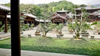 Home.Exchange.HongKong.183-1200465