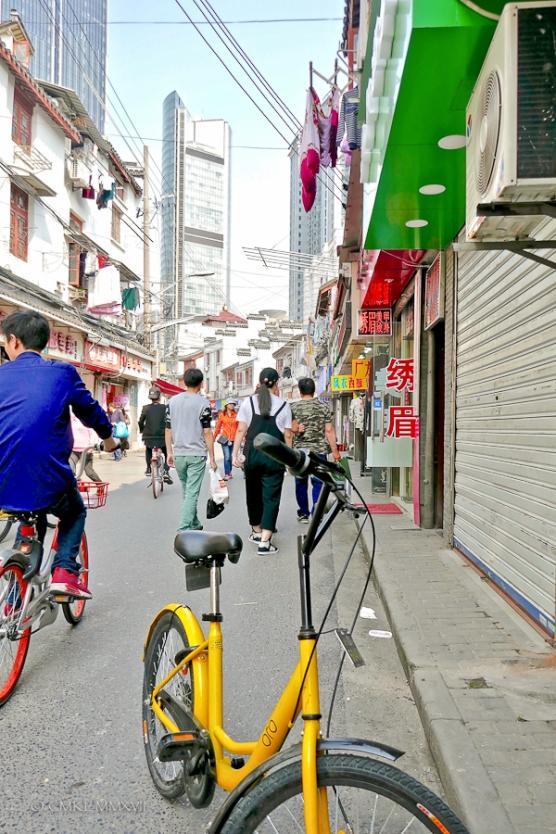 Home.Exchange.Shanghai.117-1210871