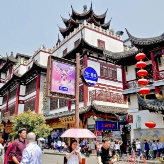 Home.Exchange.Shanghai.155-1210701