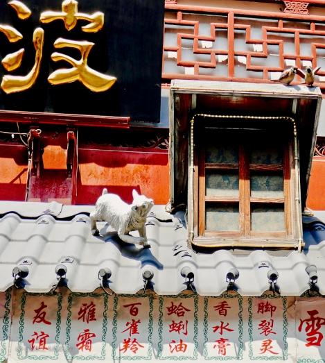 Home.Exchange.Shanghai.159-1210716