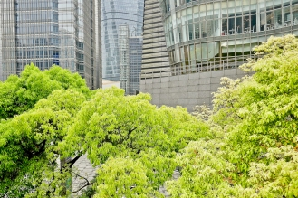 Shanghai.Home.Exchange.373-1220622