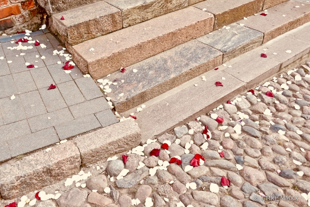 Rose pedals gracing the church steps.